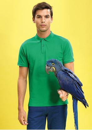 Picture of Men's Classic Fit Polo Shirt - AQ010 - SPECIAL OFFER